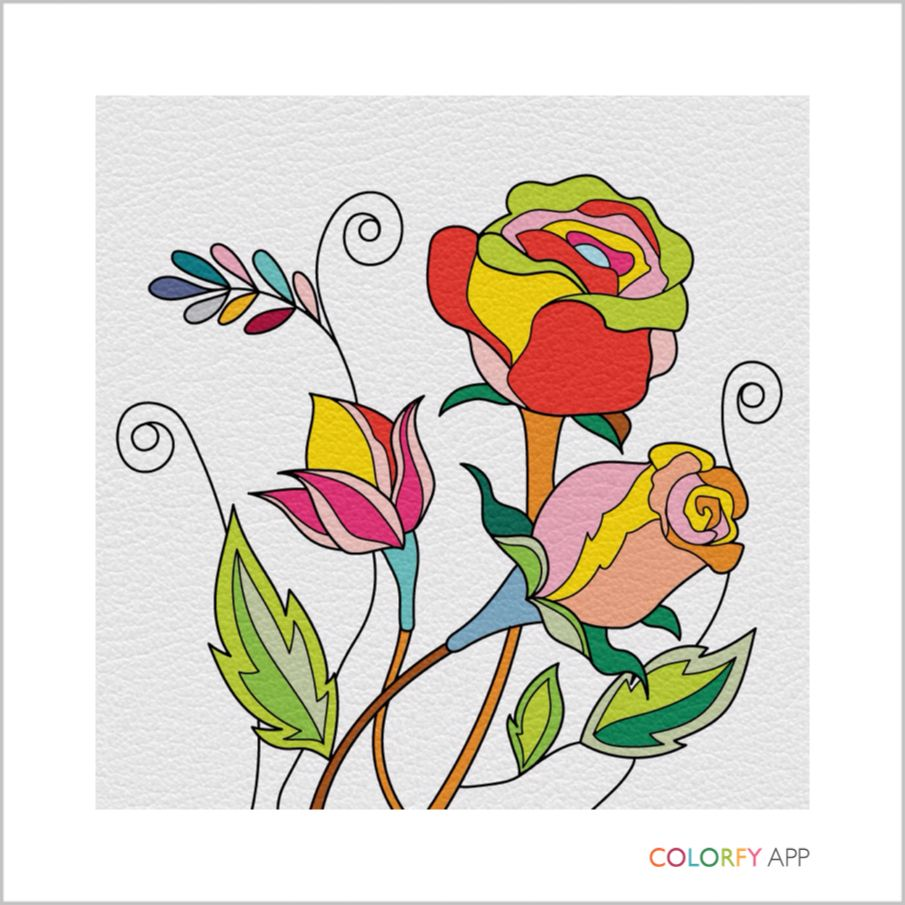 colorfy explore 😍
