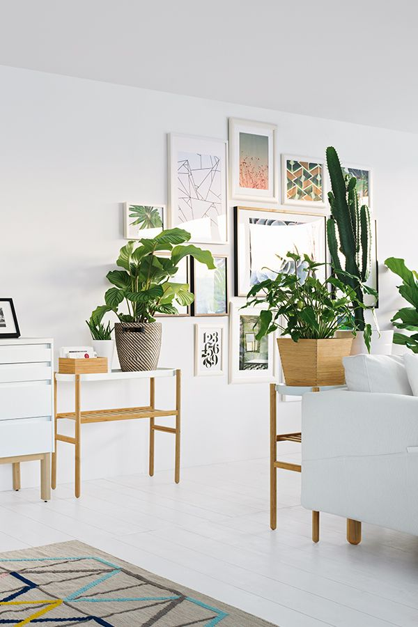 satsumas blumenst nder bambus wei interior. Black Bedroom Furniture Sets. Home Design Ideas
