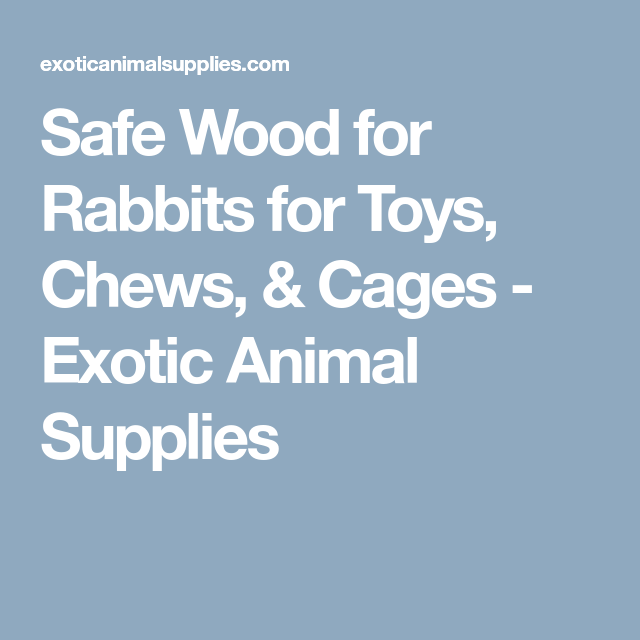 Safe Wood for Rabbits for Toys, Chews, & Cages - Exotic Animal Supplies