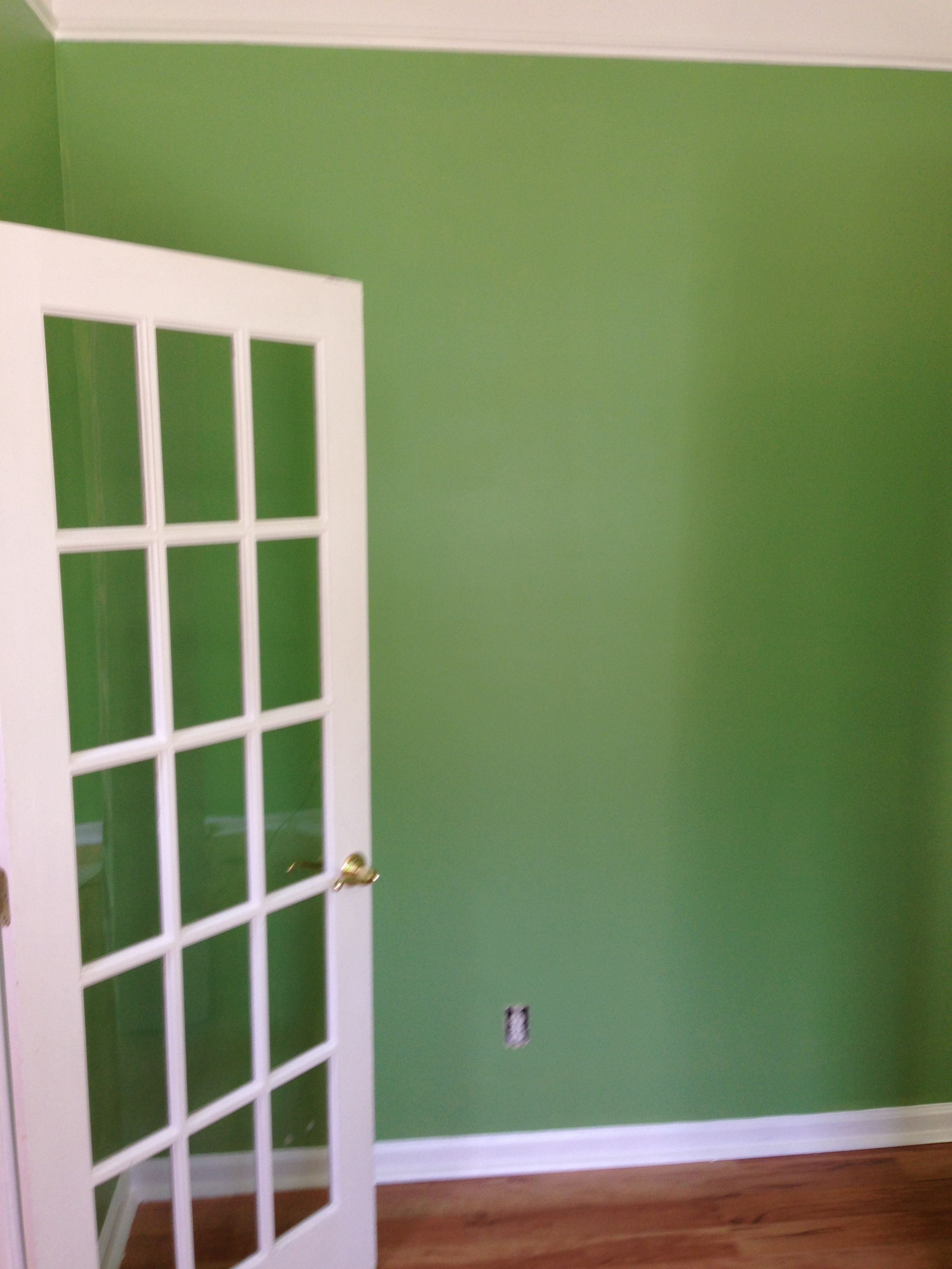 Sherwin Williams Organic Green Color Matched To Olympic One Paint And Primer From Lowes