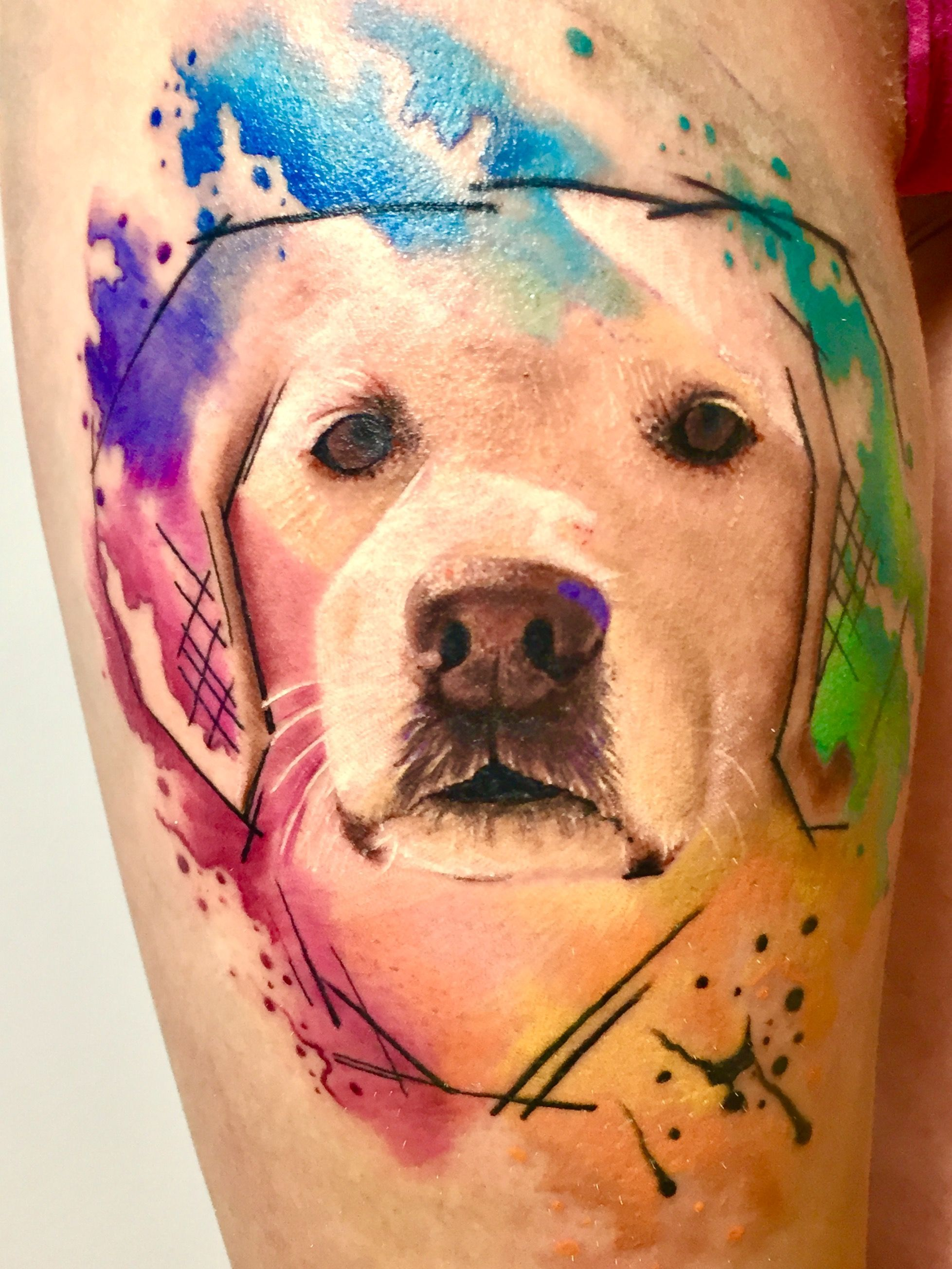 How To Make Sure Your Tattoo Heals Well Dog Portrait Tattoo