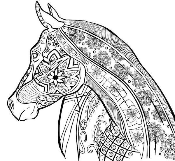 paard25 - TopKleurplaat.nl