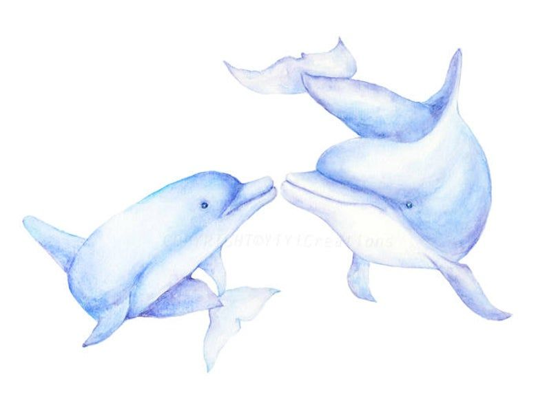 Watercolor Hand Painted Sea Creature Dolphins Clipart Mom And Etsy Dolphin Drawing Dolphin Clipart Dolphin Images