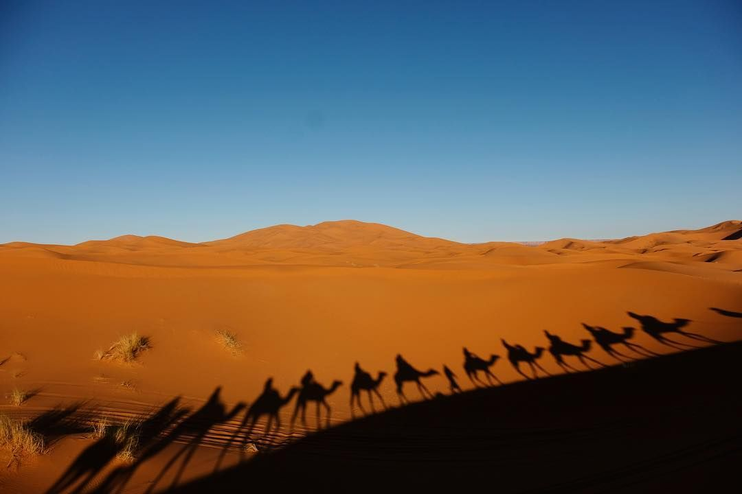 The shadow in Sahara #amazing #desert #discover #explore #fujifilm #fujifilmmy #instagood #instadaily #holiday #journey #light #morocco #nature #outdooradventures #photo #photography #picturesque #sahara #travelgram #travelphotography #travel #urban #vacation #worldtour