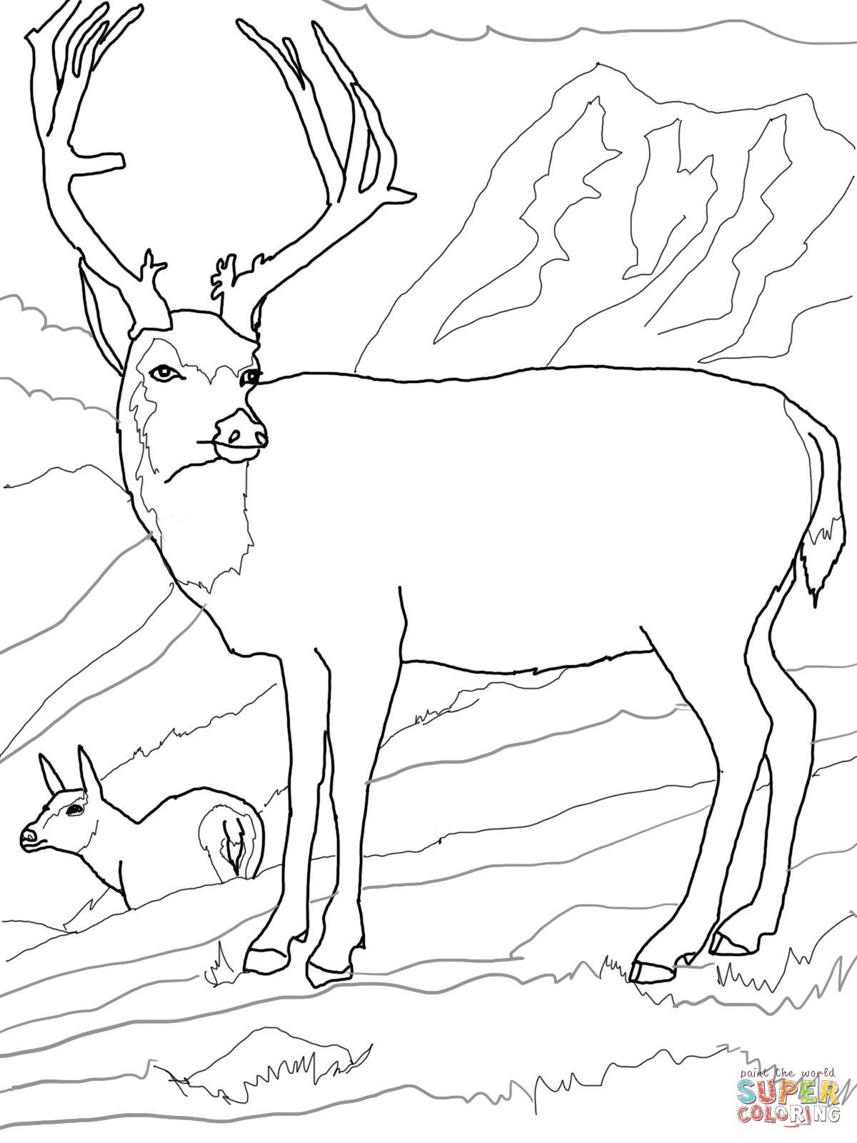 Mule Deers Family Coloring Page Deer Coloring Pages Family Coloring Pages Coloring Pages