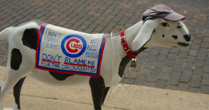 Chicago Cubs Beer And Cake Image