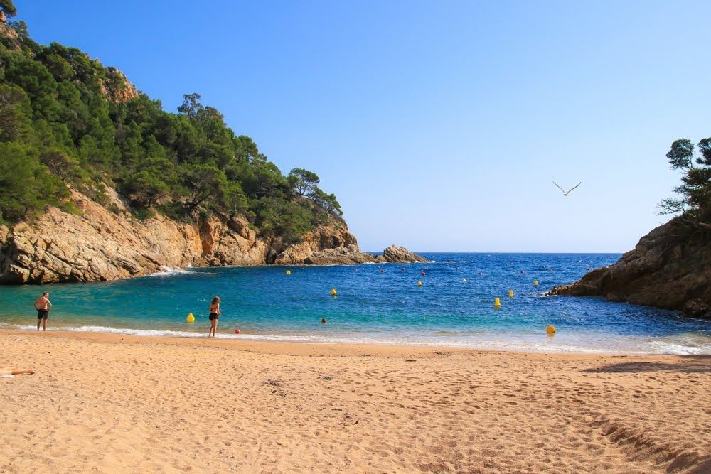 Las 10 Mejores Playas Y Calas De La Costa Brava Calas Costa Brava Playa Las Mejores Playas
