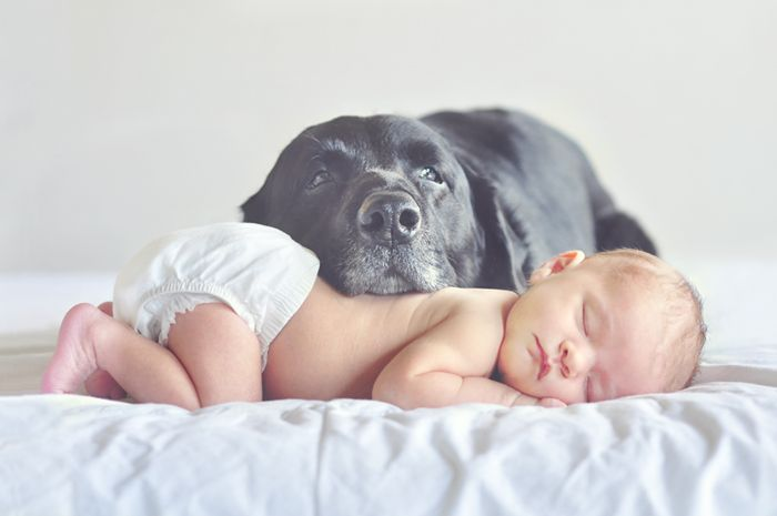 "Lots of couples have a furry baby before a ""real"" baby comes into the picture. I love the idea of capturing a love-filled moment between your pet and your newborn. This picture taken by Hanna Mac is truly worth a thousand words!"