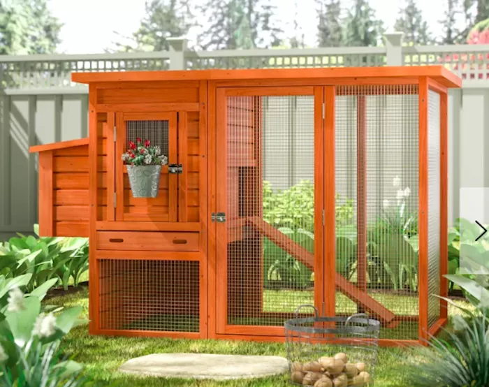 The 7 Best Chicken Coops of 2020 in 2020   Small chicken ...