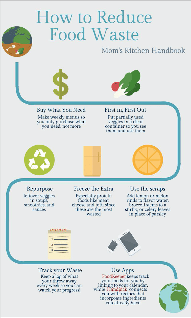 10 Tips to Reduce Food Waste   Pinterest   Food waste, Food and Fun food