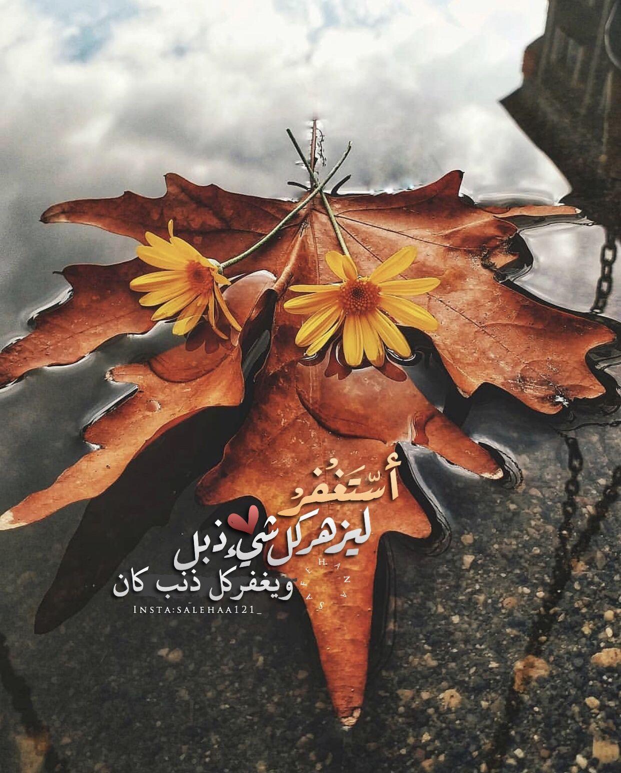 استغفرالله العظيم Islamic Pictures Painting Moose Art