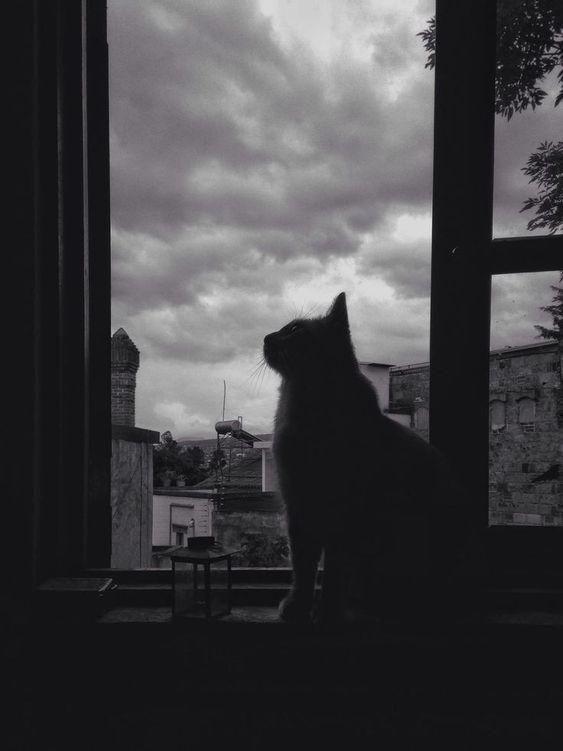 100+ hình ảnh buồn cho những ngày chất chứa tâm trạng - BlogAnChoi