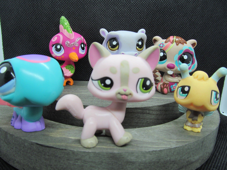Easter Basket Toy Six Littlest Pet Shop Pets Etsy Little Pets Littlest Pet Shop Pet Shop [ 2250 x 3000 Pixel ]