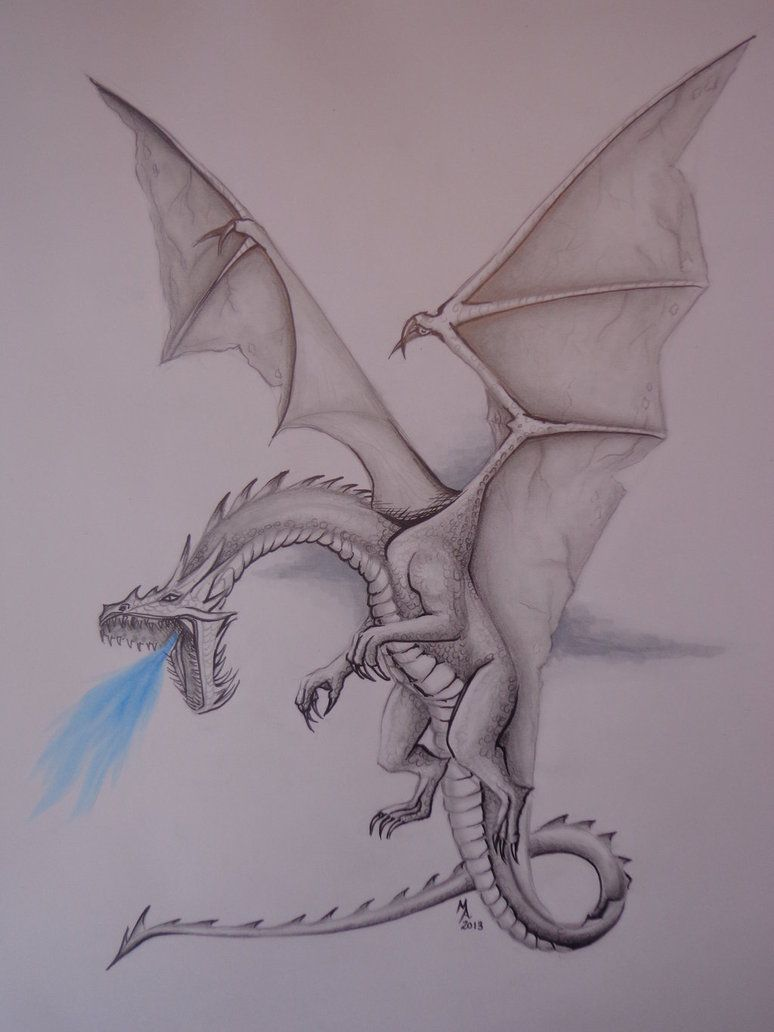 Find This Pin And More On Dragons Realistic Dragon Drawing By  Masteringanime