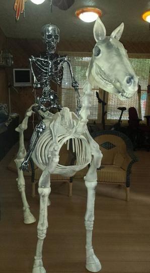 Pin On Halloween Horse