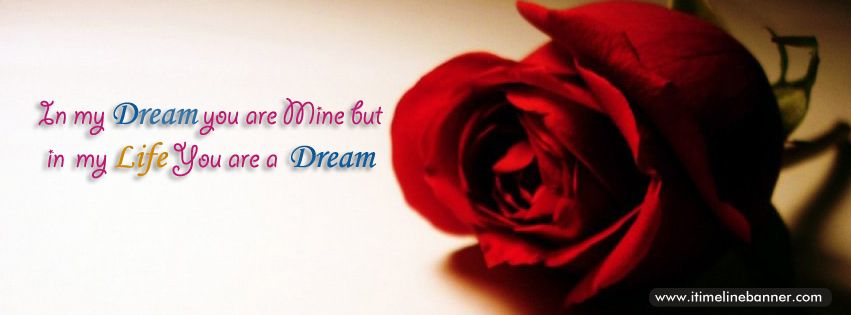 Images Of Roses With Quotes Red Rose Quotes Facebook Timeline