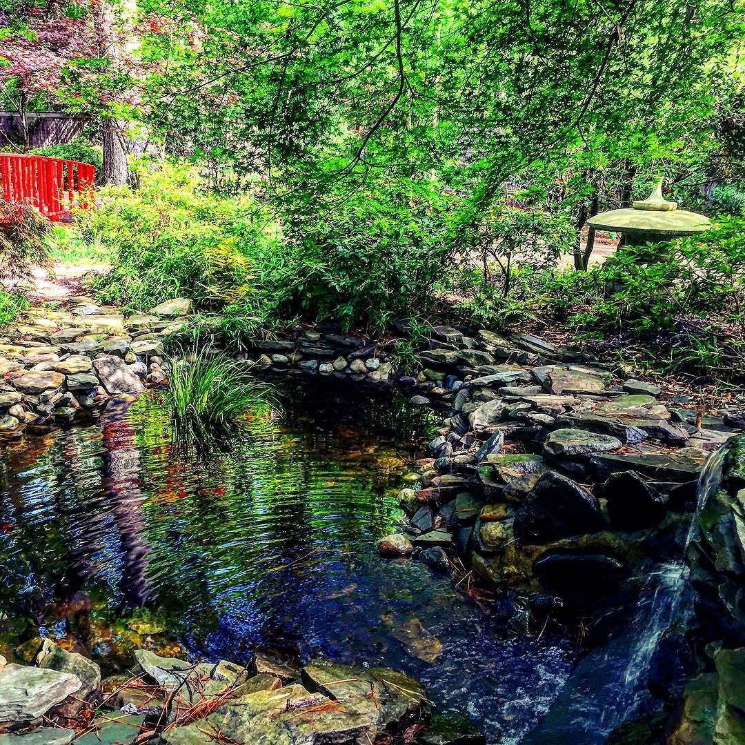 Yes we do indeed have a Japanese garden in Virginia Beach. The ...