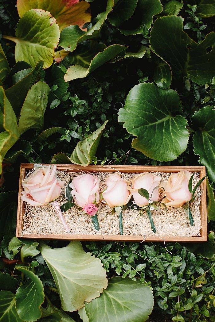 Blush Roses boutonnieres for garden wedding   fabmood.com