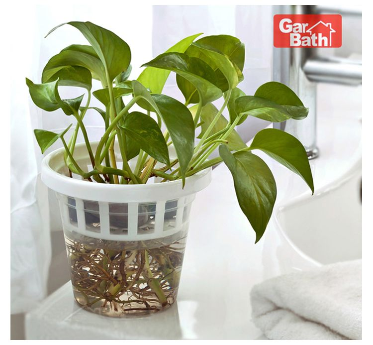 Great Vacuum Suction Shelf Wall Cup Flower Pot With Flower Holder In Flower Pots  U0026 Planters