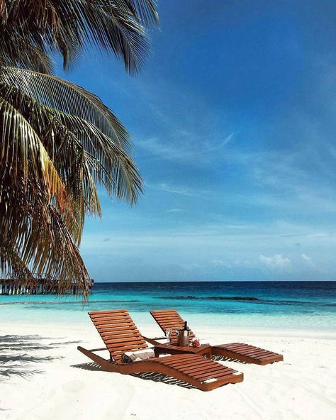 Coco Palm Bodu Hithi Maldives Malediven Pinterest Playa