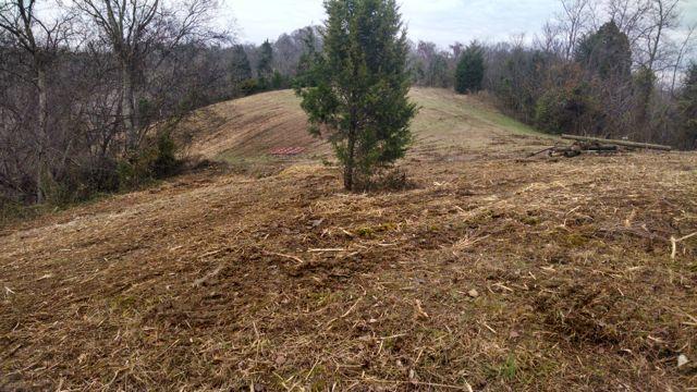 Meadow restoration
