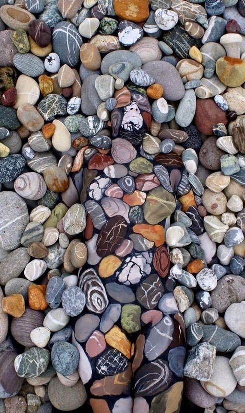 Dobre sa pozrite na obrázok v plnej veľkosti vo vnútri článku. Vidíte len hromadu zfarbených kameňov, alebo ste medzi nimi objavili aj niečo iné?