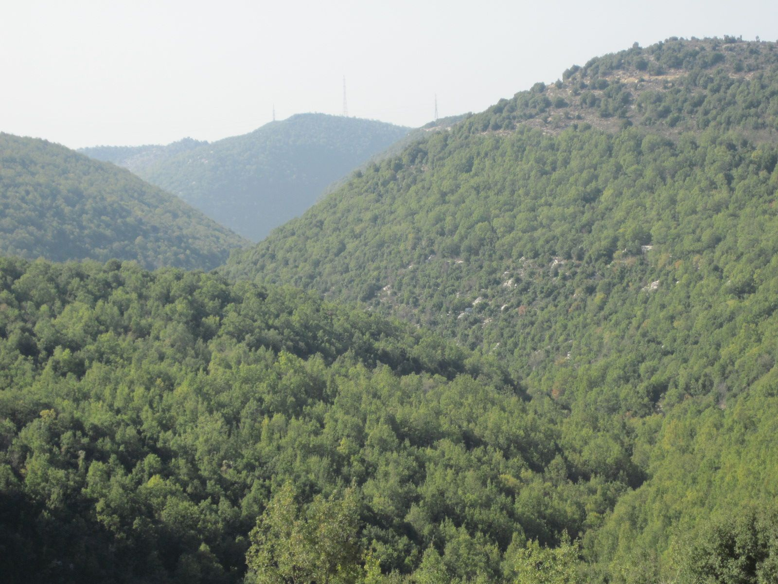 LEBANON, ANNAYA COUNTRYSIDE, SO GREEN