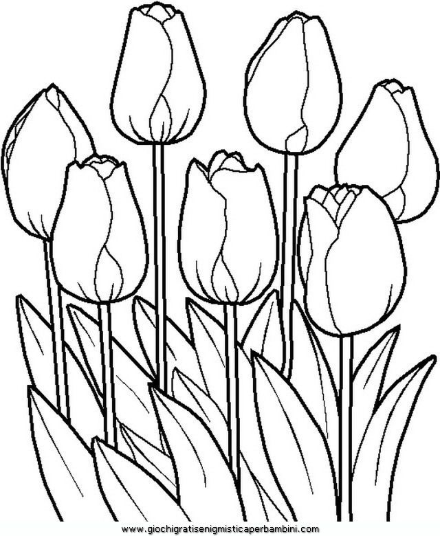 Spring 43 Spring Coloring Pages For Adults And Teenagers