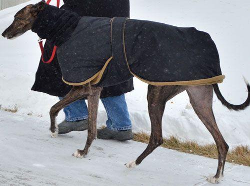 Snow Angel Winter Coat With Black Waterproof Breathable