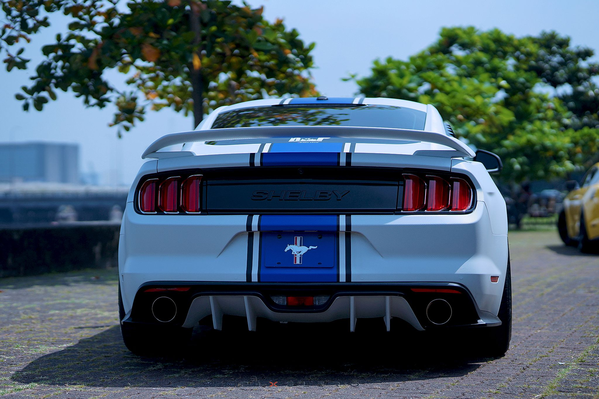 Mustang Ecoboost In Speedform Gt350r Style Spoiler And Type Ar Rear Diffuser Mustang Ecoboost Mustang Shelby
