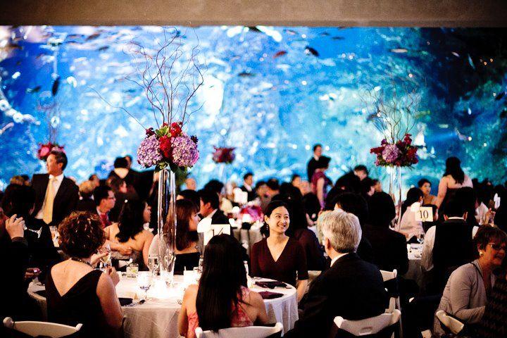 Seattle Aquarium Weddings Flowers Wedding Reception Centerpiece