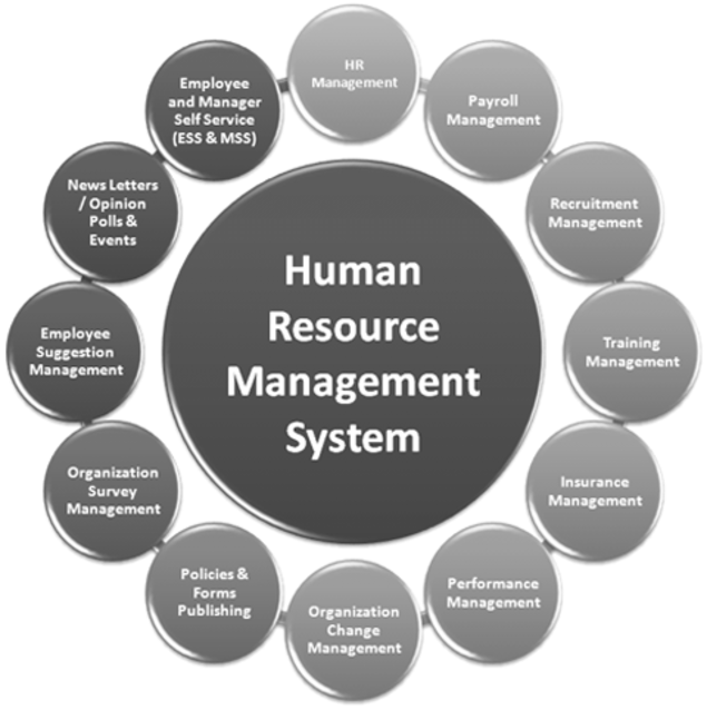Read About 4 Features A Business Must Seek In A Human Resource Management Software M Human Resource Management Human Resource Management System Human Resources