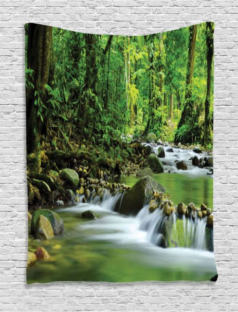 Mountain Stream In A Tropical Rain Forest Wilderness Scene Wall Hanging Tapestry Ebay Mountain Stream Tropical Rainforest Ambesonne