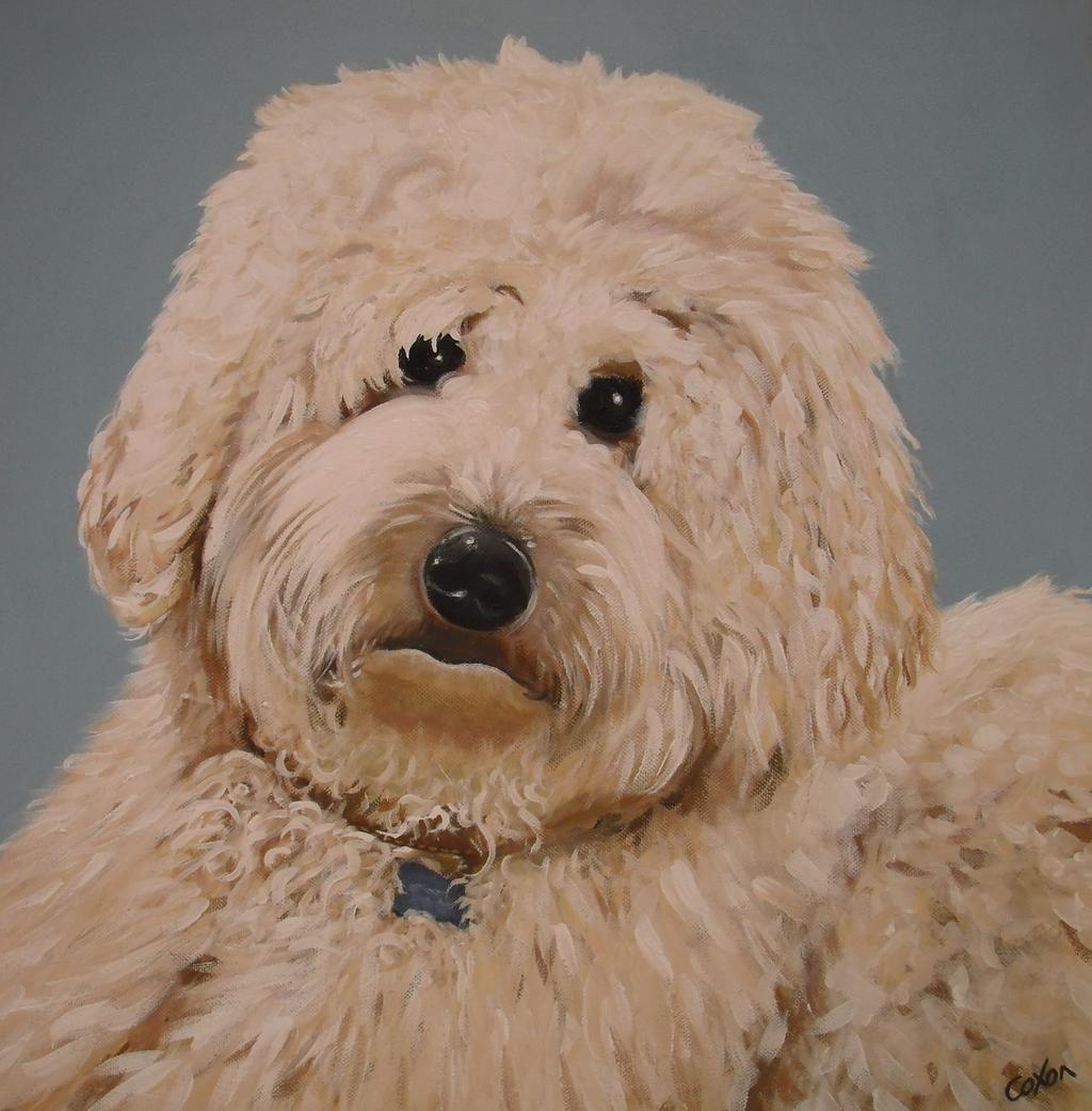 Dog Pet Portrait - www.custommurals.co.uk