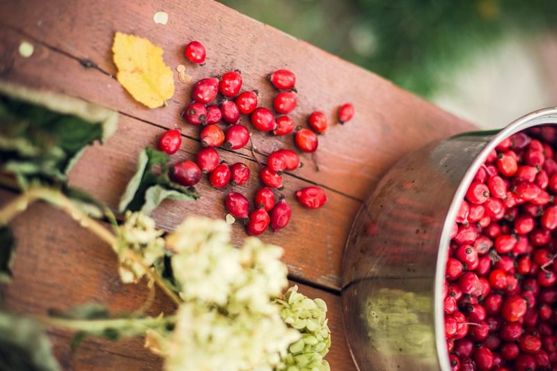 Why Rosehip Oil Is So Good For Your Skin, According To Science
