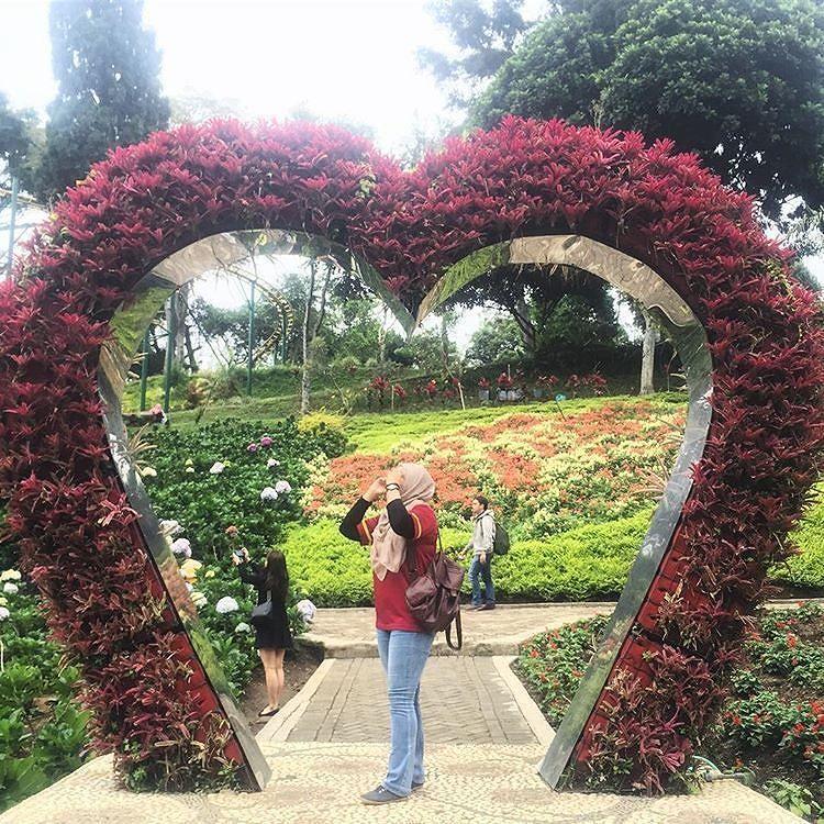 Wisata Selecta Batu Malang: Taman Bunga SELECTA Batu. Sangat Cocok Buat Liburan