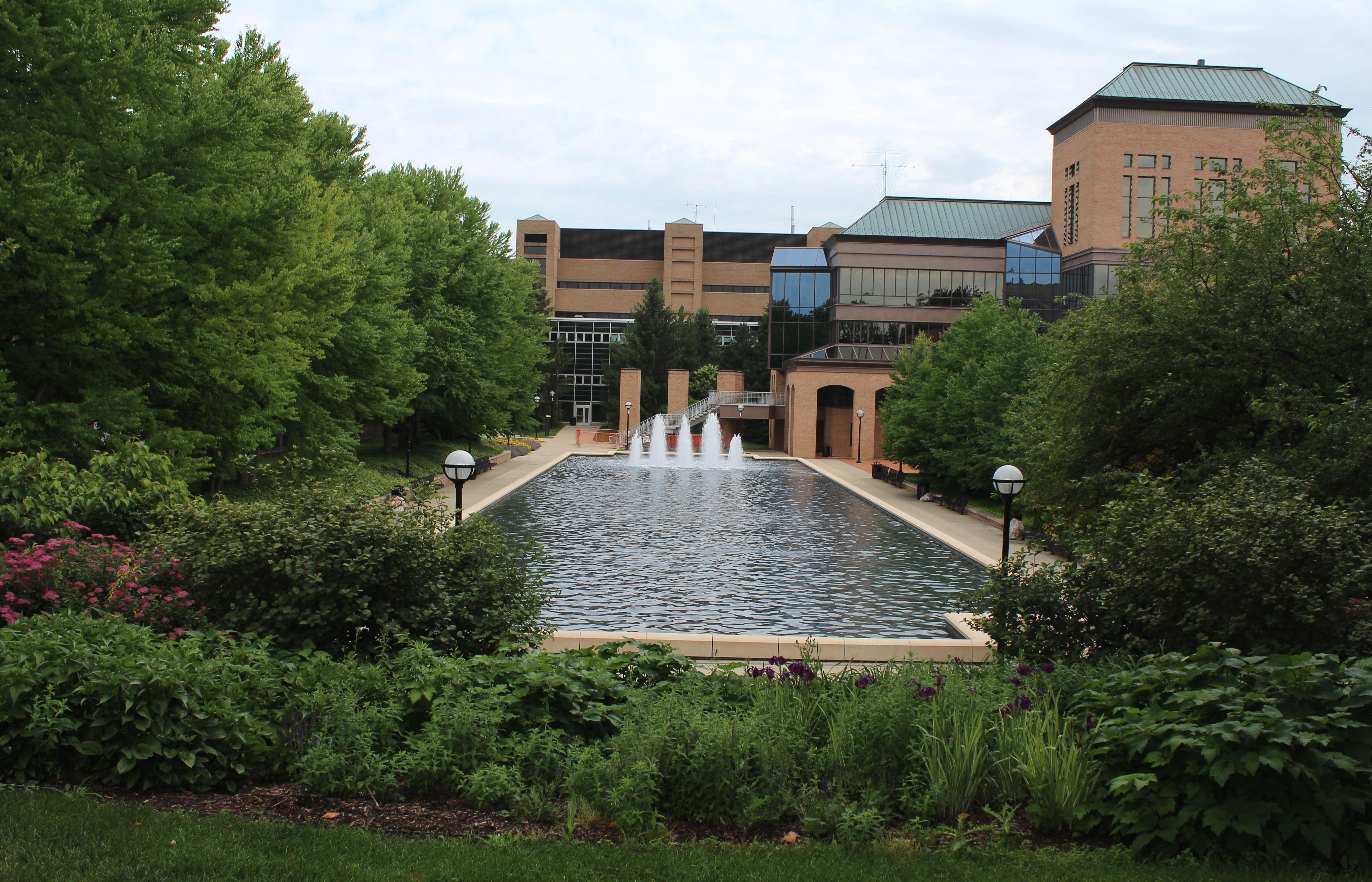 University Of Michigan Ann Arbor North Campu Reflecting Pool Campus Admission Essays Undergraduate Essay