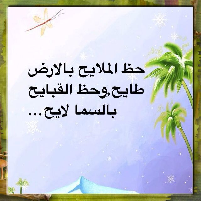 Pin By Mona Alshamsi On أمثال قديمه من التراث True Words Funny Quotes Arabic Quotes