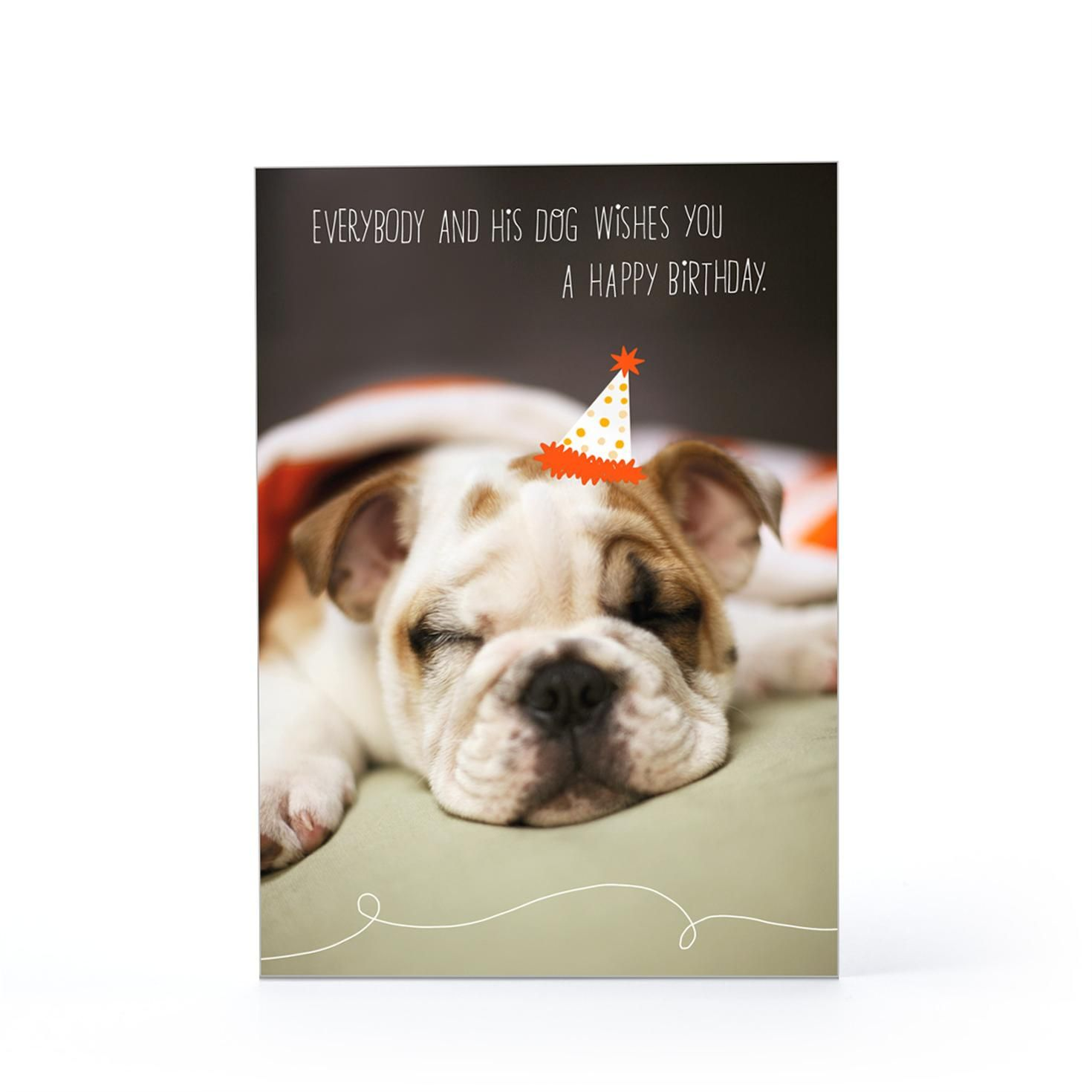 birthday wishes for pets – Dog Birthday Card