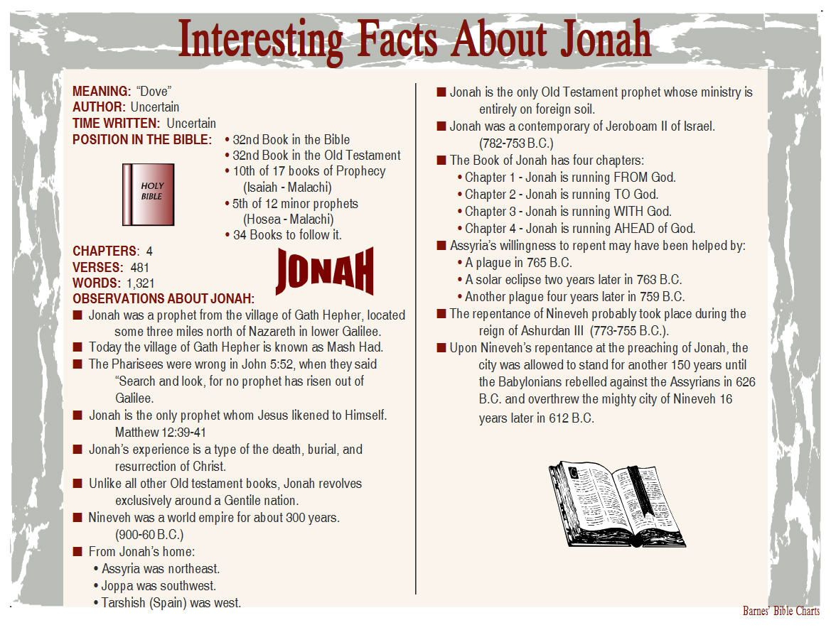 Interesting facts about jonah bible facts inductive
