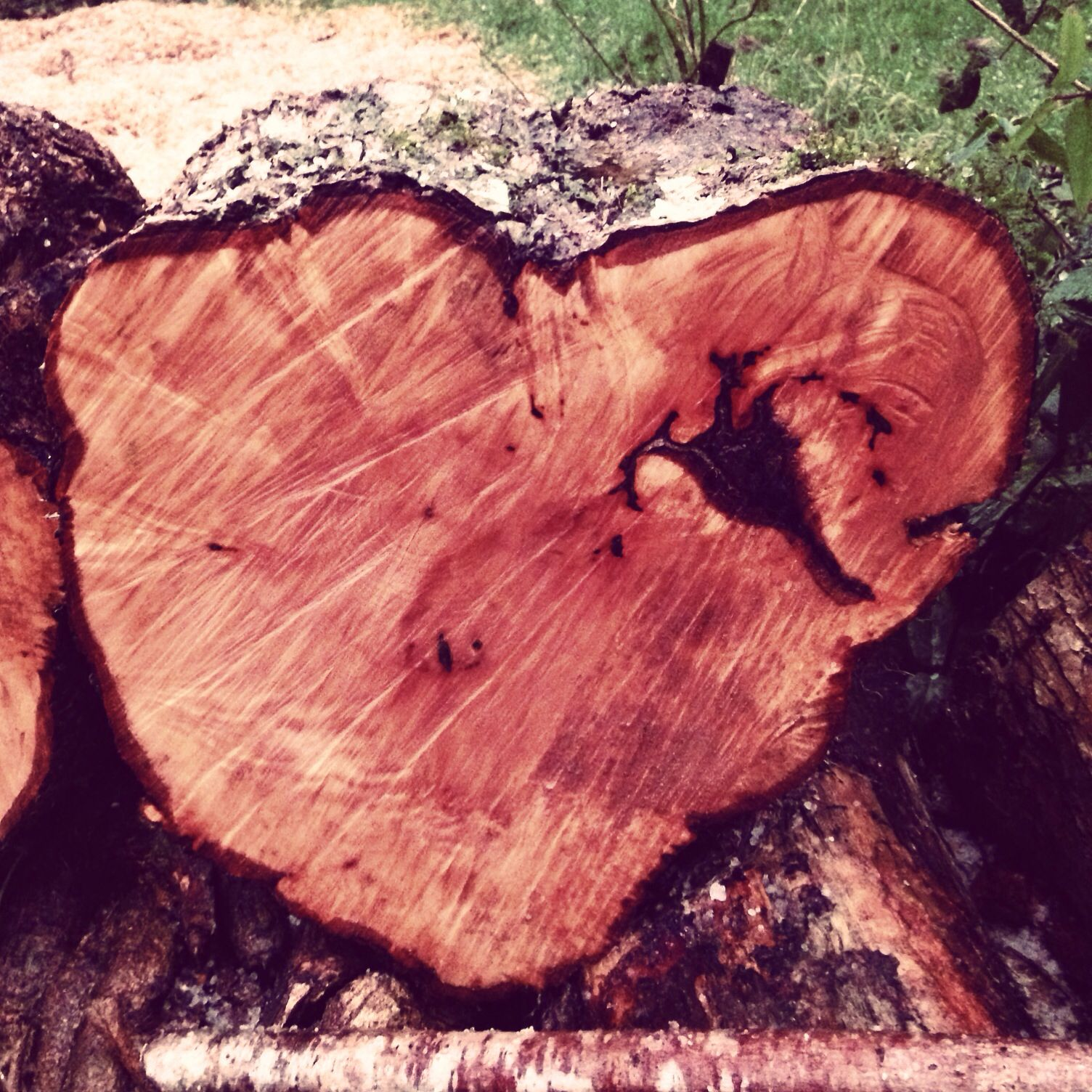 Happy Valentines Day from www.handmadeinblighty.com Love this natural heart shaped field maple log :)