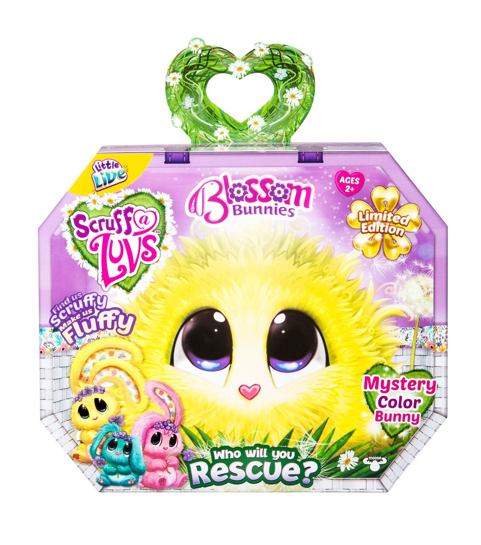 Puppy gift box canada