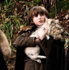 Game Of Thrones-Bran Stark