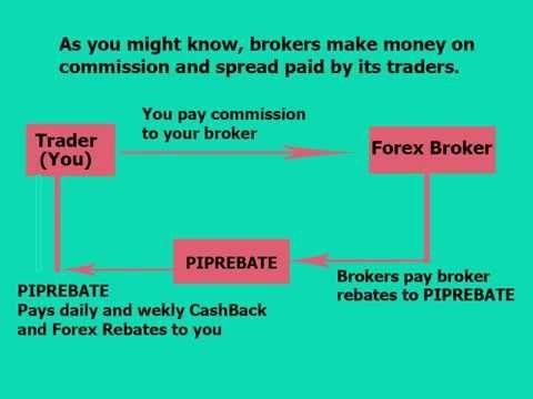 What is rebate in forex форумы иностранные по бинарным опционам