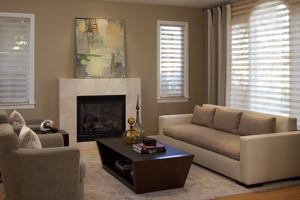 Houzz Contemporary Living Rooms
