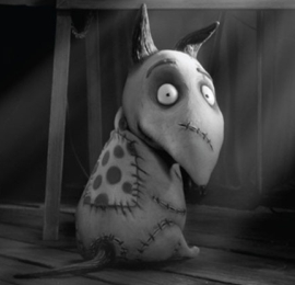 I Made Sparky From Frankenweenie Tim Burton Album On Imgur Tim Burton Films Tim Burton Tim Burton Movie