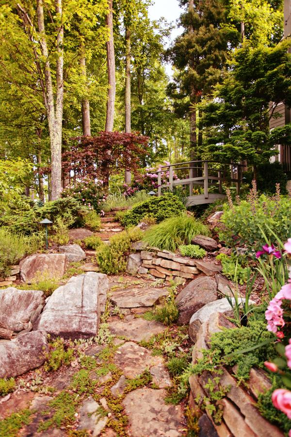 Landscape Landscape Design Ideas Outdoor Living Space Ideas Green Space Ideas North Carolina Landscape C Landscape Design Landscape Residential Landscaping