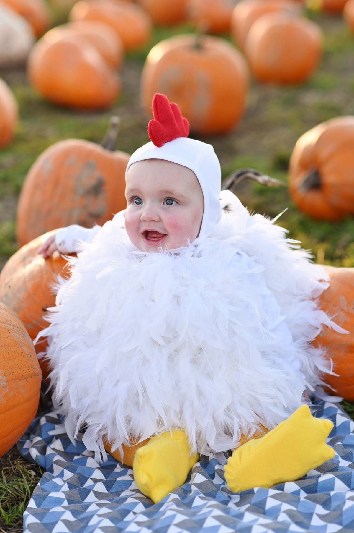 Pin By Jodi On The Little Boo Crew Baby Chicken