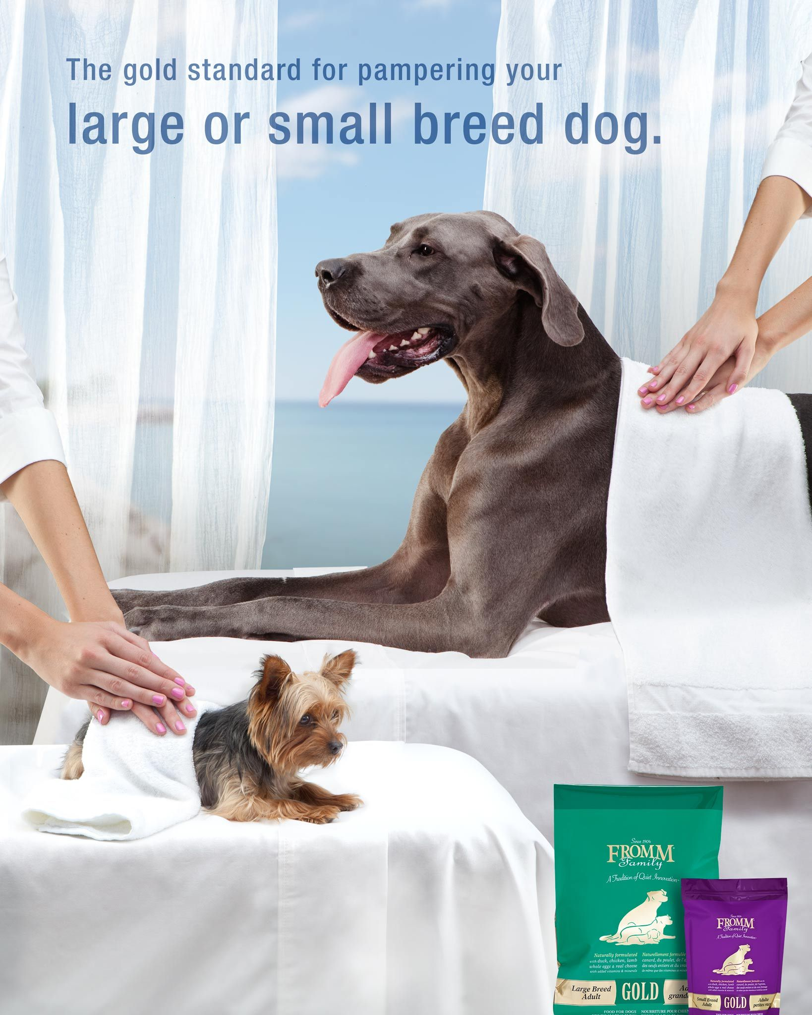 Gold Nutritionals for Dogs Small breed, Small dog breeds