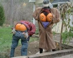 Hilarious but don't think my neighbors would approve. But the mooning one isn't that bad?  Is it?